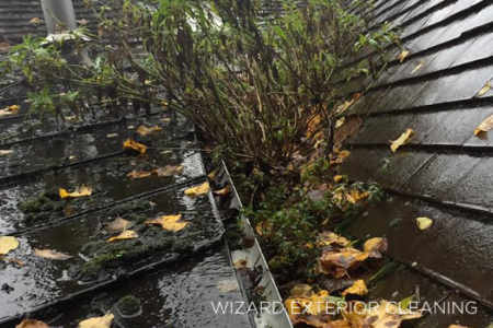 Gutter Cleaning Bridgnorth